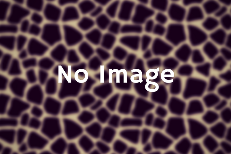 no image